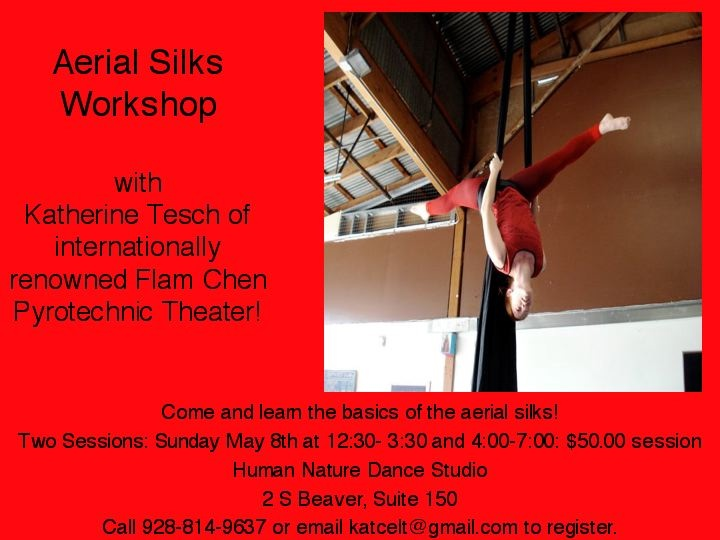 Aerial Workshop